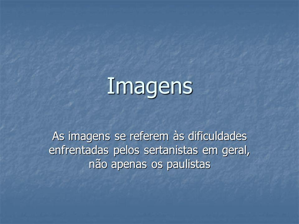 Imagens As imagens se referem às dificuldades enfrentadas pelos sertanistas em geral, não apenas os paulistas