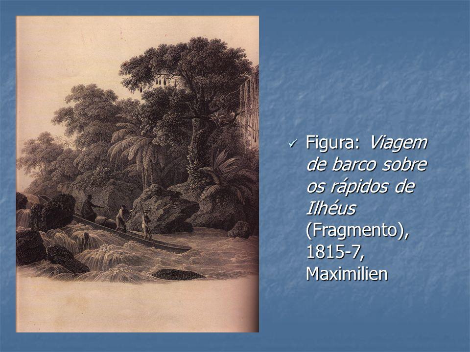 Figura: Viagem de barco sobre os rápidos de Ilhéus (Fragmento), 1815-7, Maximilien Figura: Viagem de barco sobre os rápidos de Ilhéus (Fragmento), 181
