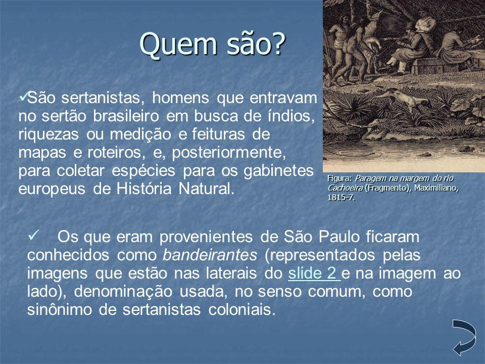 Quem são? Os que eram provenientes de São Paulo ficaram conhecidos como bandeirantes (representados pelas imagens que estão nas laterais do slide 2 e