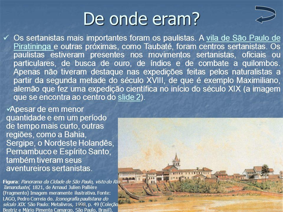 De onde eram? Os sertanistas mais importantes foram os paulistas. A vila de São Paulo de Piratininga e outras próximas, como Taubaté, foram centros se