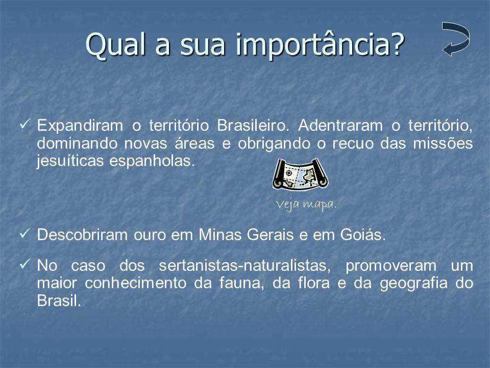 Qual a sua importância? Expandiram o território Brasileiro. Adentraram o território, dominando novas áreas e obrigando o recuo das missões jesuíticas