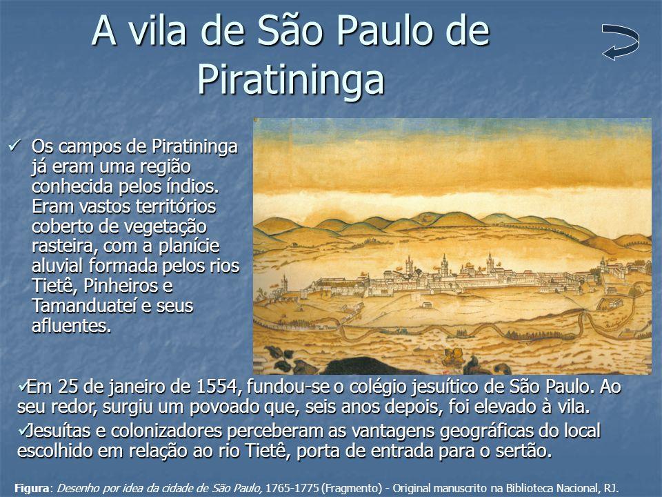 Os campos de Piratininga já eram uma região conhecida pelos índios. Eram vastos territórios coberto de vegetação rasteira, com a planície aluvial form