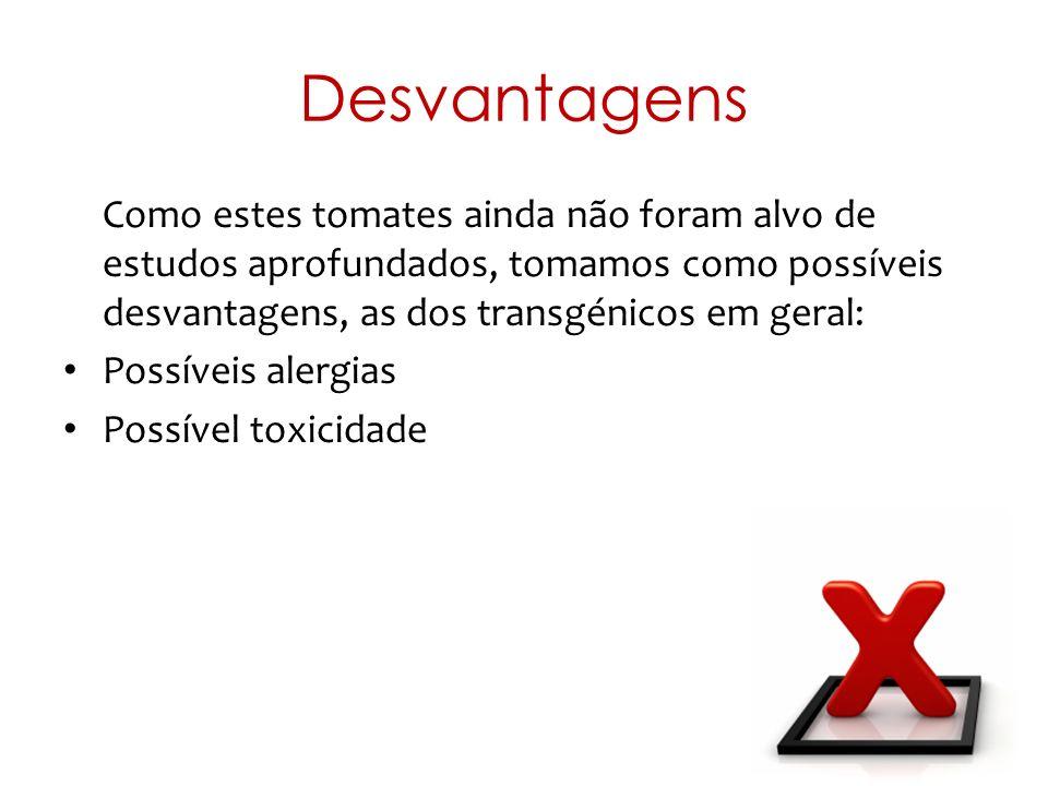 Desvantagens Como estes tomates ainda não foram alvo de estudos aprofundados, tomamos como possíveis desvantagens, as dos transgénicos em geral: Possí