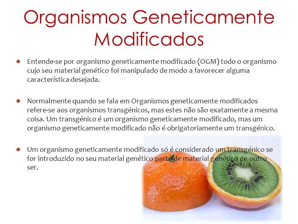 Características Este tomate é resistente a infeções causadas por fungos e também à seca.