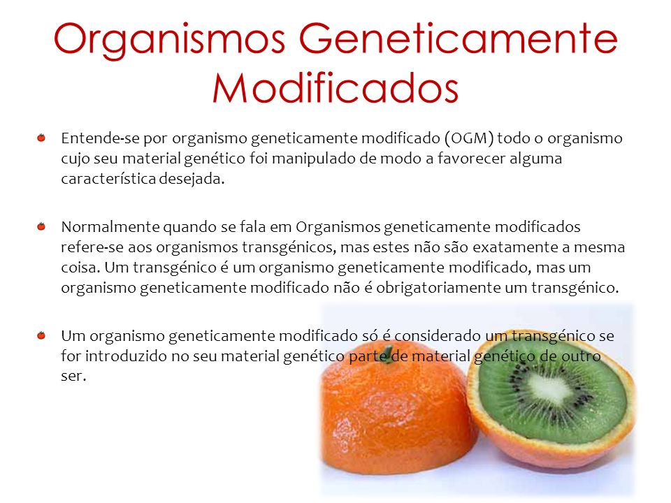 Organismos Geneticamente Modificados Entende-se por organismo geneticamente modificado (OGM) todo o organismo cujo seu material genético foi manipulad