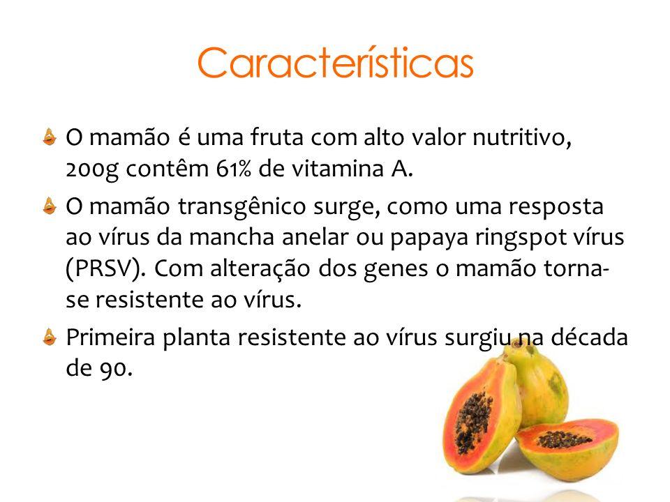 Características O mamão é uma fruta com alto valor nutritivo, 200g contêm 61% de vitamina A. O mamão transgênico surge, como uma resposta ao vírus da