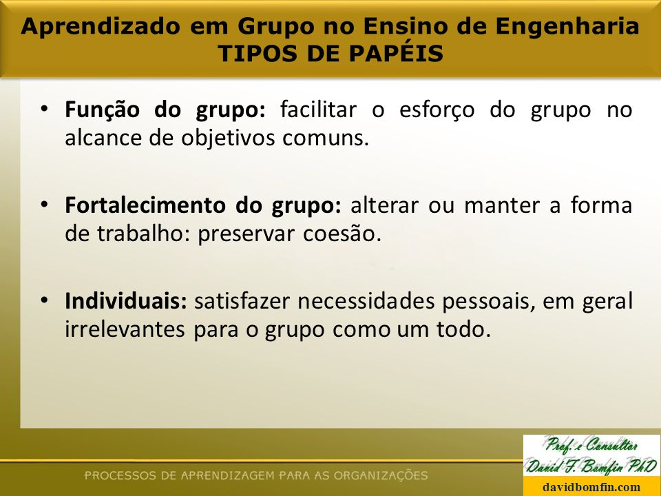 Função do grupo: facilitar o esforço do grupo no alcance de objetivos comuns.