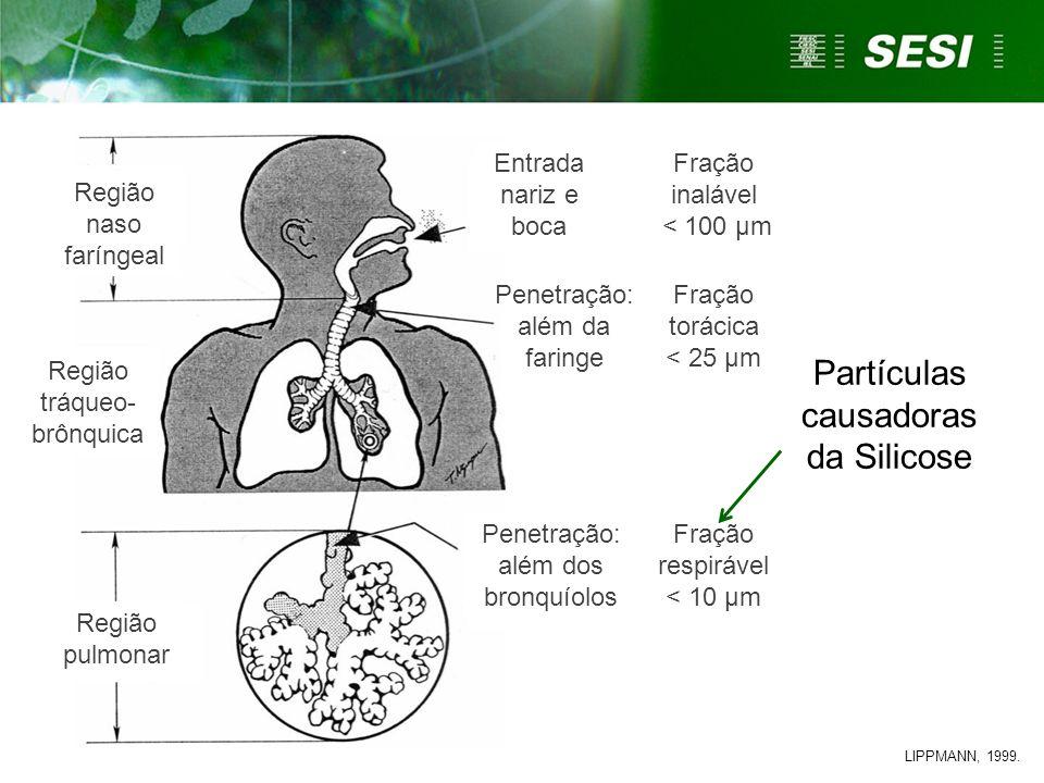 Partículas causadoras da Silicose Região tráqueo- brônquica Região naso faríngeal Região pulmonar LIPPMANN, 1999. Fração inalável < 100 µm Fração torá