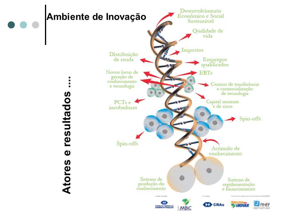 Ambiente de Inovação Atores e resultados....