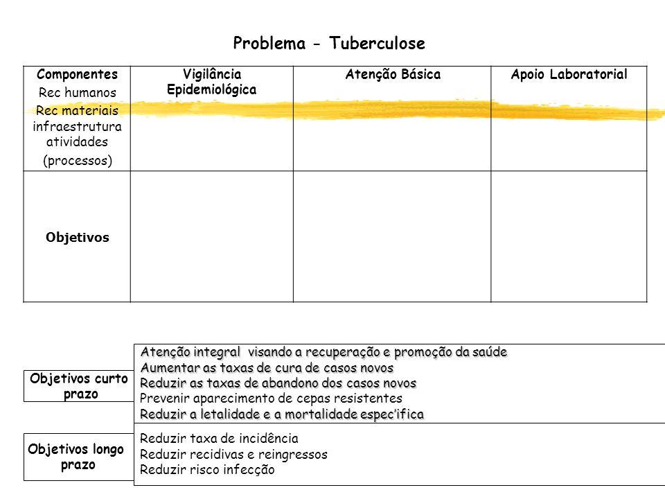 Problema - Tuberculose Componentes Rec humanos Rec materiais infraestrutura atividades (processos) Vigilância Epidemiológica Atenção BásicaApoio Labor