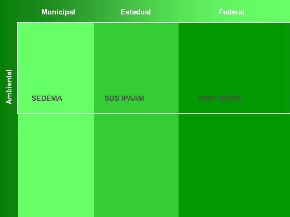 MunicipalEstadualFederal Ambiental SEDEMASDS IPAAMMMA IBAMA
