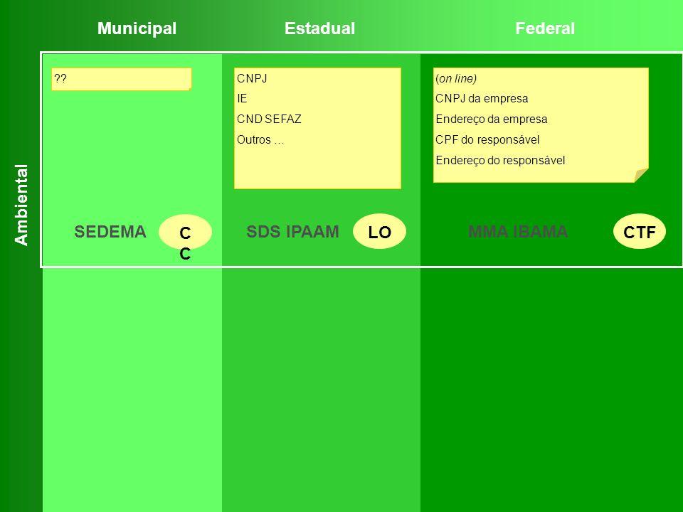 (on line) CNPJ da empresa Endereço da empresa CPF do responsável Endereço do responsável ?? MunicipalEstadualFederal Ambiental CNPJ IE CND SEFAZ Outro