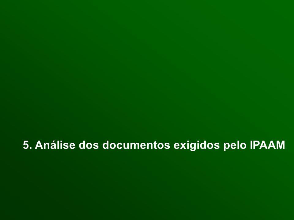 5. Análise dos documentos exigidos pelo IPAAM