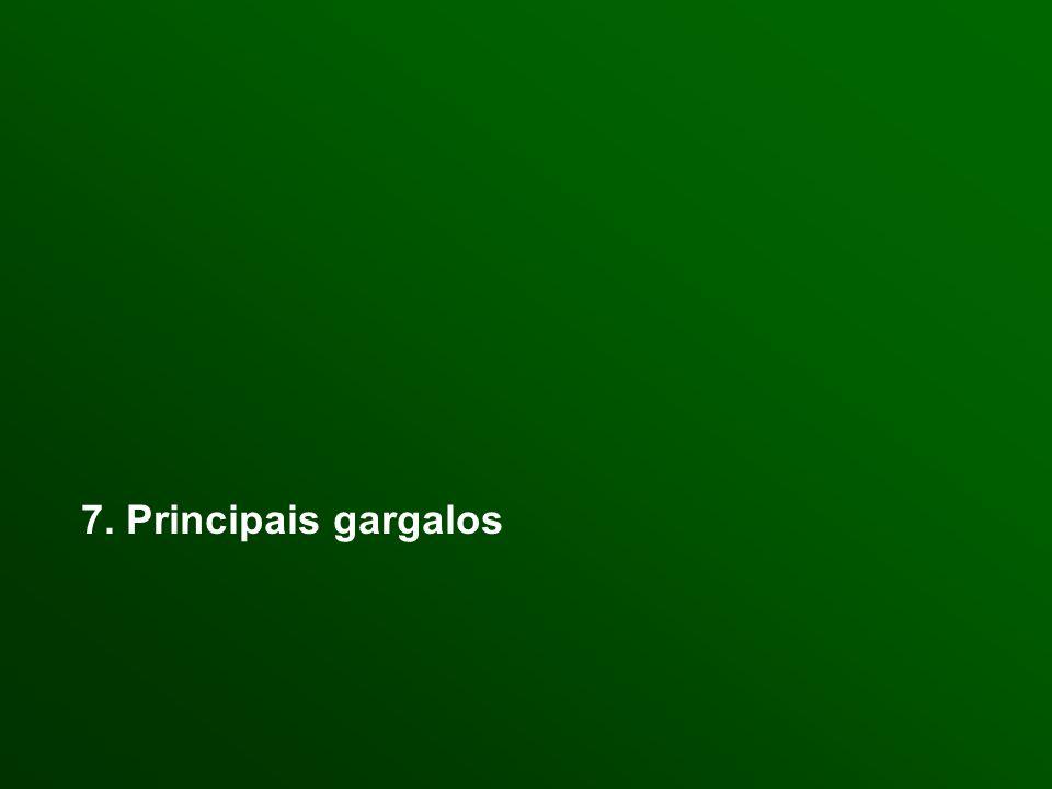 7. Principais gargalos