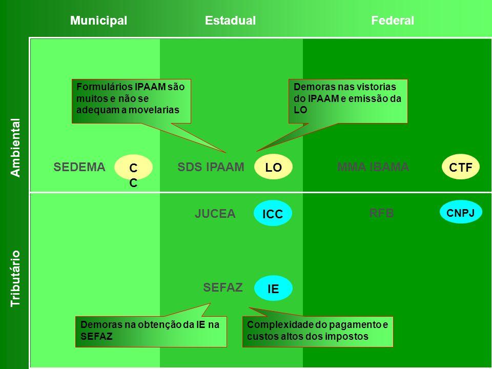 MunicipalEstadualFederal Ambiental Tributário Formulários IPAAM são muitos e não se adequam a movelarias Demoras nas vistorias do IPAAM e emissão da L