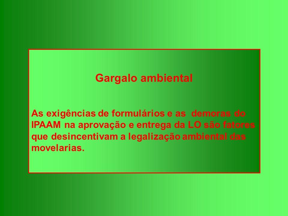 Gargalo ambiental As exigências de formulários e as demoras do IPAAM na aprovação e entrega da LO são fatores que desincentivam a legalização ambienta