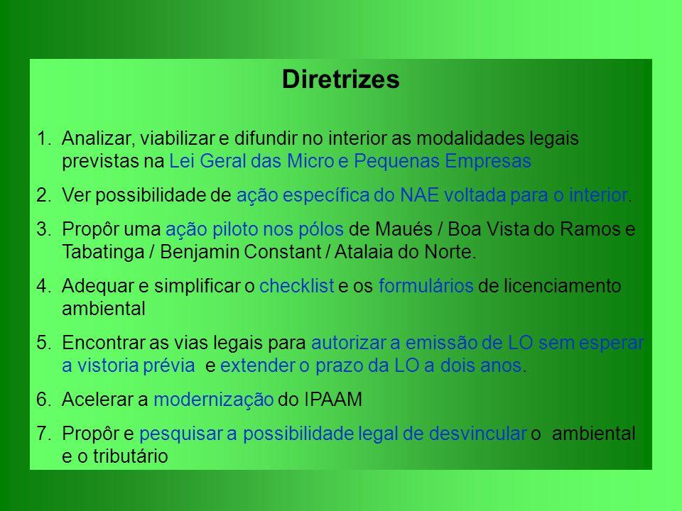 Diretrizes 1.Analizar, viabilizar e difundir no interior as modalidades legais previstas na Lei Geral das Micro e Pequenas Empresas 2.Ver possibilidad