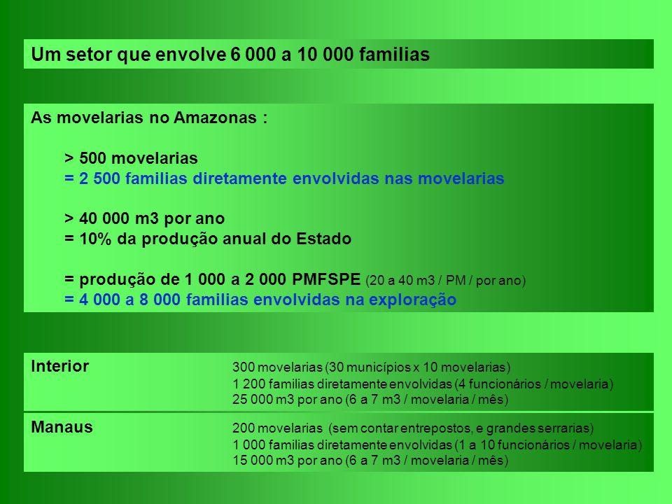 Interior 300 movelarias (30 municípios x 10 movelarias) 1 200 familias diretamente envolvidas (4 funcionários / movelaria) 25 000 m3 por ano (6 a 7 m3
