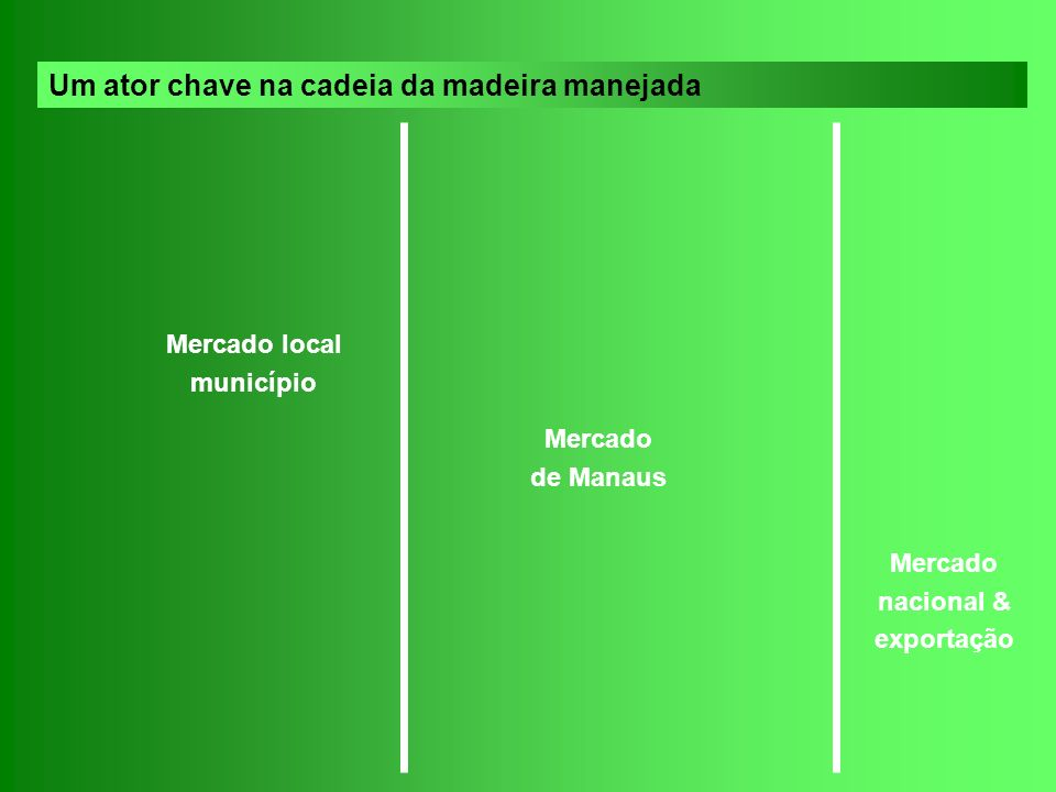 DC E MC P pc E M P pc pc e C B SC T P pc C M pM M pE M E LC D E C Pc E P pc pc S T P pc C e C B pc L L pi I C pc C S L L pi pc C M E pc P pc P P pi Mercado local município Mercado de Manaus Mercado nacional & exportação Um ator chave na cadeia da madeira manejada