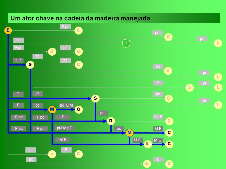 Prazo : on line Custo/ano : R$ 0 (porte : microempresa) (potencial poluidor : medio) Lei 10.165/00 - IN 96/06 – IBAMA Prazo : Custo : Prazo : 30 dias (depende de vistoria) Custo/ano : R$ 130 (porte : microempresa) (Potencial poluidor : pequeno) IN 001/06 - IPAAM MunicipalEstadualFederal Ambiental LO C CTF SEDEMASDS IPAAMMMA IBAMA
