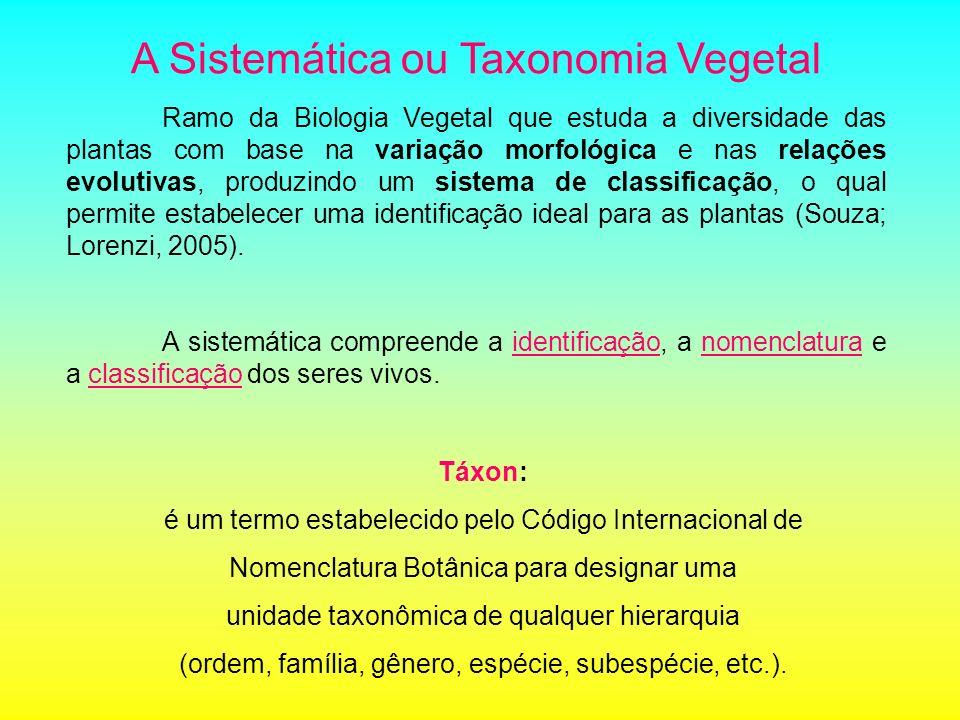 Ramo da Biologia Vegetal que estuda a diversidade das plantas com base na variação morfológica e nas relações evolutivas, produzindo um sistema de cla