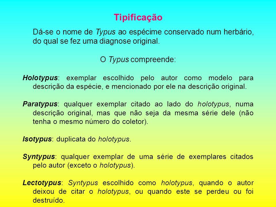 Tipificação Dá-se o nome de Typus ao espécime conservado num herbário, do qual se fez uma diagnose original. O Typus compreende: Holotypus: exemplar e