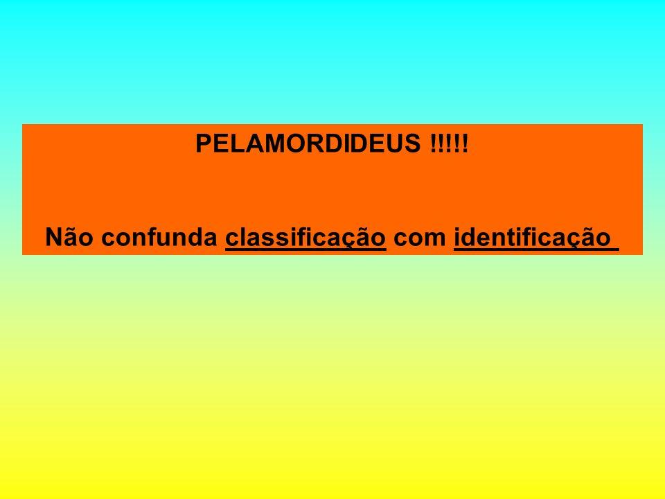 PELAMORDIDEUS !!!!! Não confunda classificação com identificação