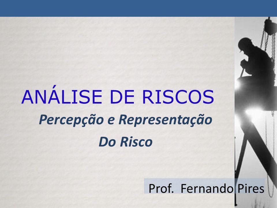 Percepção e Representação Do Risco Prof. Fernando Pires ANÁLISE DE RISCOS