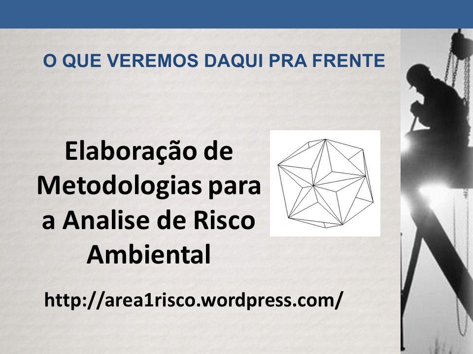 O QUE VEREMOS DAQUI PRA FRENTE http://area1risco.wordpress.com/ Elaboração de Metodologias para a Analise de Risco Ambiental