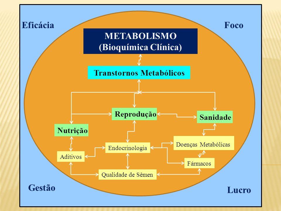 METABOLISMO (Bioquímica Clínica) Transtornos Metabólicos Nutrição Reprodução Sanidade Aditivos Qualidade de Sêmen Endocrinologia Doenças Metabólicas Eficácia Lucro Gestão Foco Fármacos