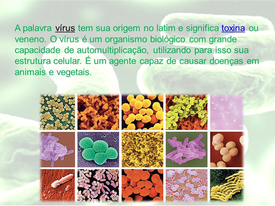 A palavra vírus tem sua origem no latim e significa toxina ou veneno. O vírus é um organismo biológico com grande capacidade de automultiplicação, uti