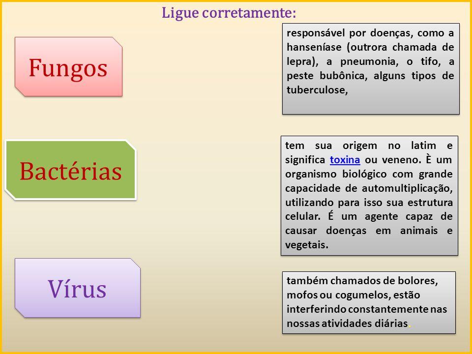 Ligue corretamente: Fungos Vírus responsável por doenças, como a hanseníase (outrora chamada de lepra), a pneumonia, o tifo, a peste bubônica, alguns
