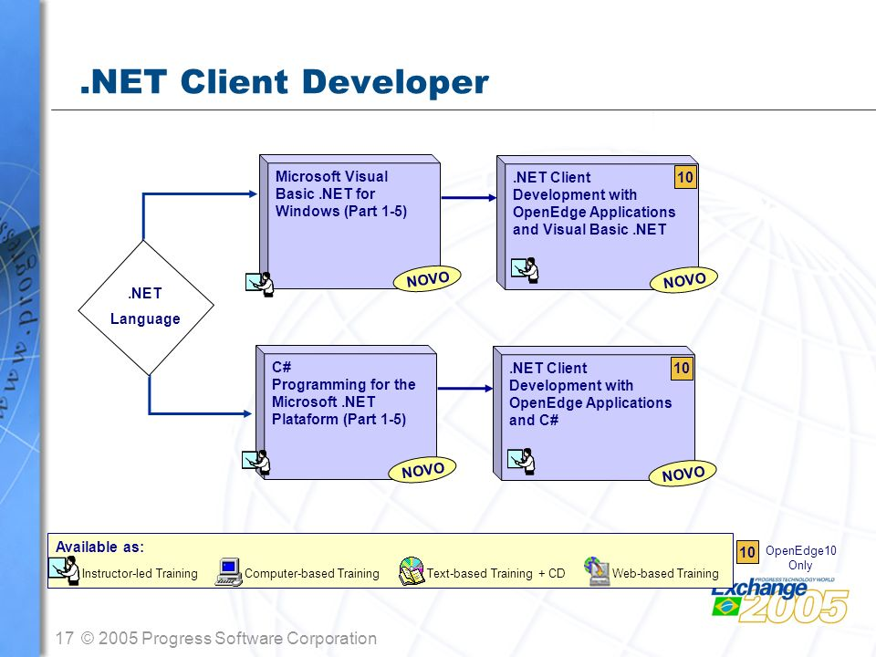 17© 2005 Progress Software Corporation.NET Client Developer.NET Language.NET Client Development with OpenEdge Applications and Visual Basic.NET Micros