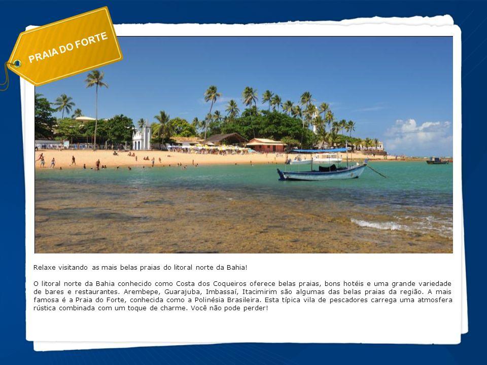 PRAIA DO FORTE Relaxe visitando as mais belas praias do litoral norte da Bahia! O litoral norte da Bahia conhecido como Costa dos Coqueiros oferece be