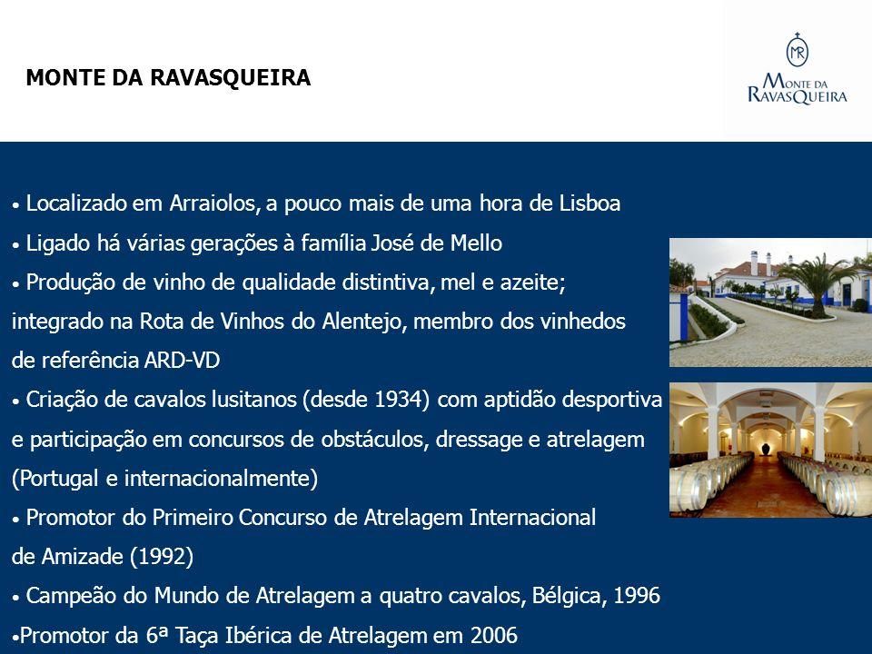 Localizado em Arraiolos, a pouco mais de uma hora de Lisboa Ligado há várias gerações à família José de Mello Produção de vinho de qualidade distintiv