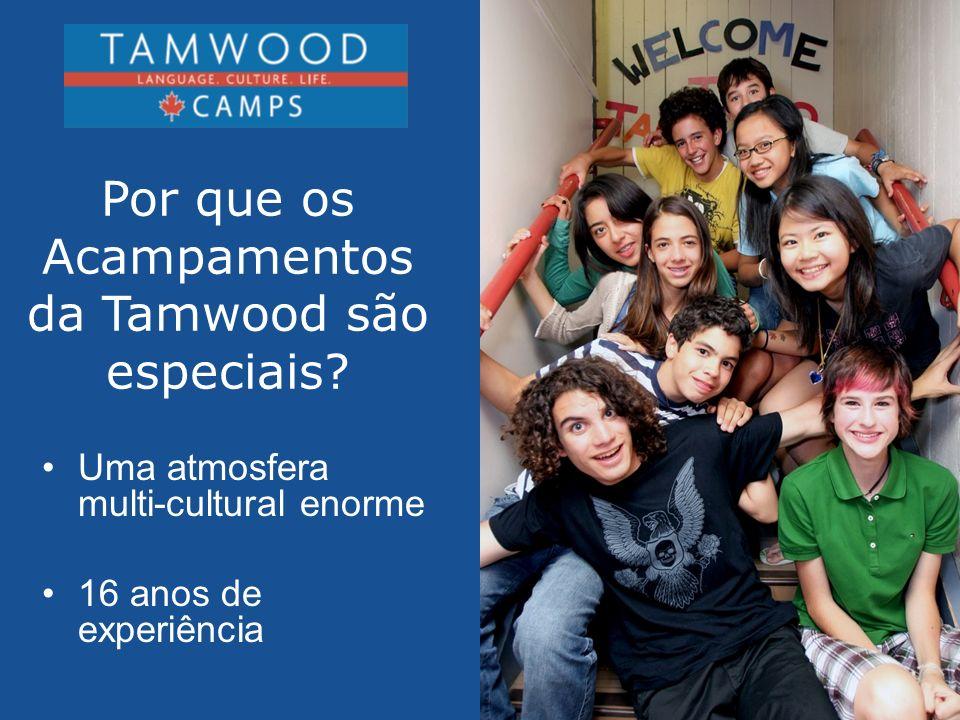 Por que os Acampamentos da Tamwood são especiais? Uma atmosfera multi-cultural enorme 16 anos de experiência