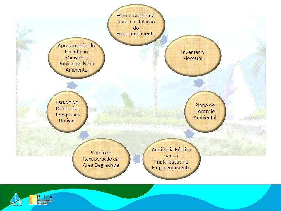Estudo Ambiental para a Instalação do Empreendimento Inventário Florestal Plano de Controle Ambiental Audiência Pública para a Implantação do Empreendimento Projeto de Recuperação da Área Degradada Estudo de Relocação de Espécies Nativas Apresentação do Projeto no Ministério Público do Meio Ambiente