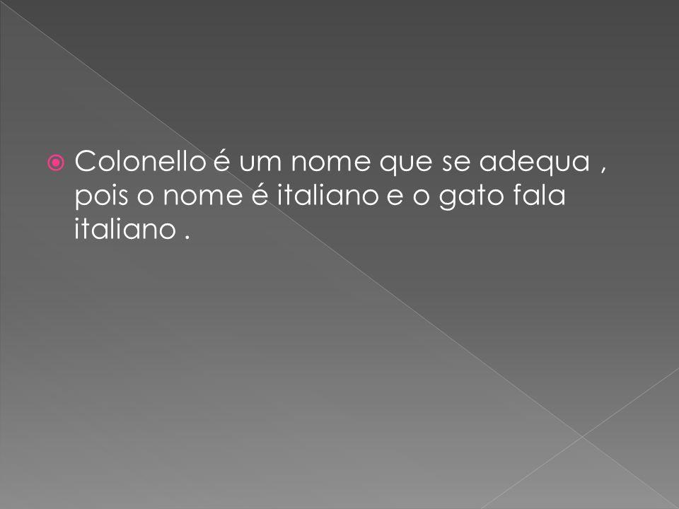 Colonello é um nome que se adequa, pois o nome é italiano e o gato fala italiano.