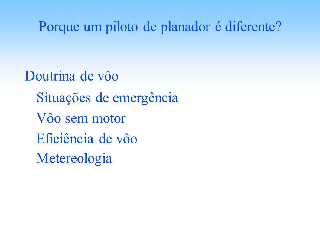 Porque um piloto de planador é diferente? Doutrina de vôo Situações de emergência Vôo sem motor Eficiência de vôo Metereologia