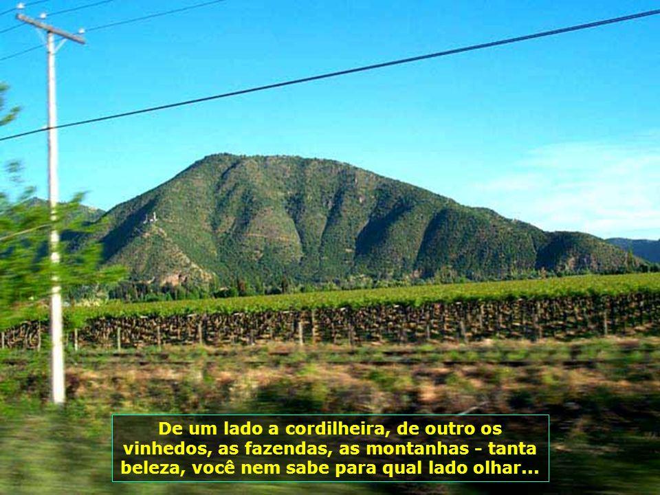 A paisagem nesse passeio é contagiante, tendo ao fundo a Cordilheira dos Andes, com seus picos nevados...