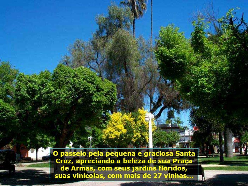 Santa Cruz é importante região de frutas e zona vinícola, suas colônias agrícolas surgiram em meados do séc. XIX. Em 22.12.1891, foi criada a comunida