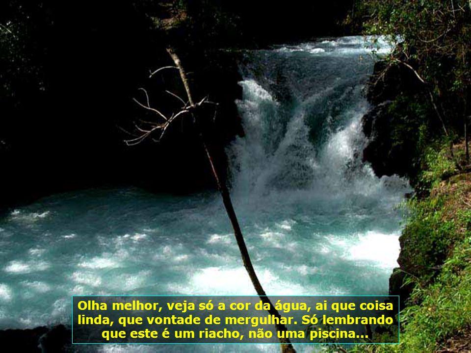 Dá só uma espiada na cor e na limpeza da água desse riacho - dá para beber de tão limpa que é...