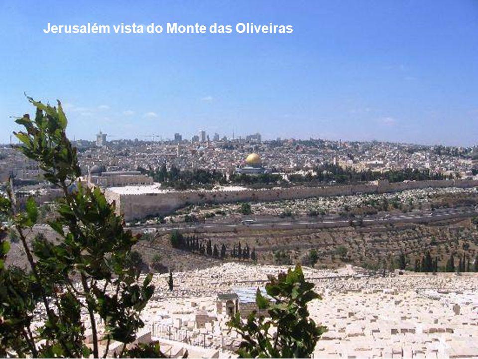 Jerusalém vista das colinas