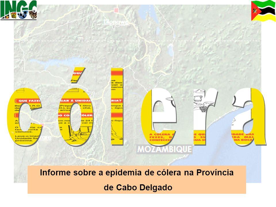 Informe sobre a epidemia de cólera na Província de Cabo Delgado