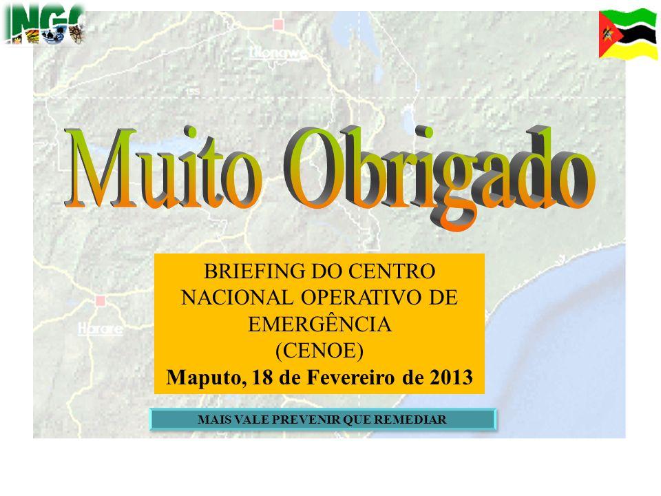 41 BRIEFING DO CENTRO NACIONAL OPERATIVO DE EMERGÊNCIA (CENOE) Maputo, 18 de Fevereiro de 2013 MAIS VALE PREVENIR QUE REMEDIAR