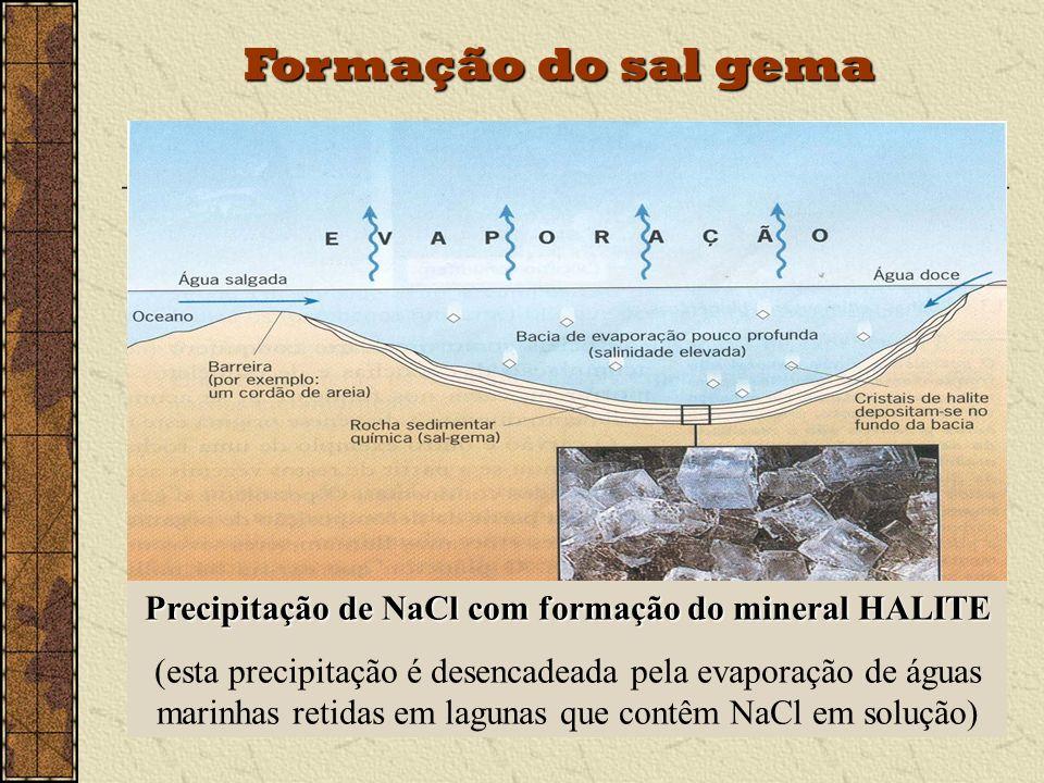 Formação do sal gema Precipitação de NaCl com formação do mineral HALITE (esta precipitação é desencadeada pela evaporação de águas marinhas retidas em lagunas que contêm NaCl em solução)