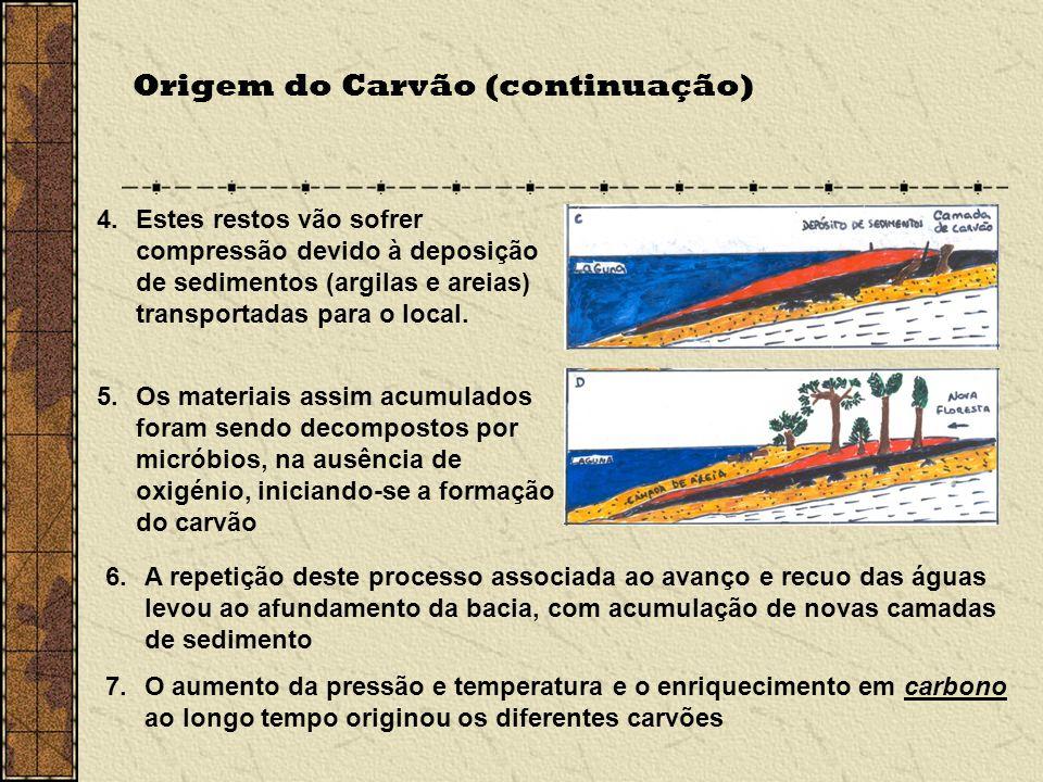 Origem do Carvão (continuação) 5.Os materiais assim acumulados foram sendo decompostos por micróbios, na ausência de oxigénio, iniciando-se a formação do carvão 6.A repetição deste processo associada ao avanço e recuo das águas levou ao afundamento da bacia, com acumulação de novas camadas de sedimento 7.O aumento da pressão e temperatura e o enriquecimento em carbono ao longo tempo originou os diferentes carvões 4.Estes restos vão sofrer compressão devido à deposição de sedimentos (argilas e areias) transportadas para o local.