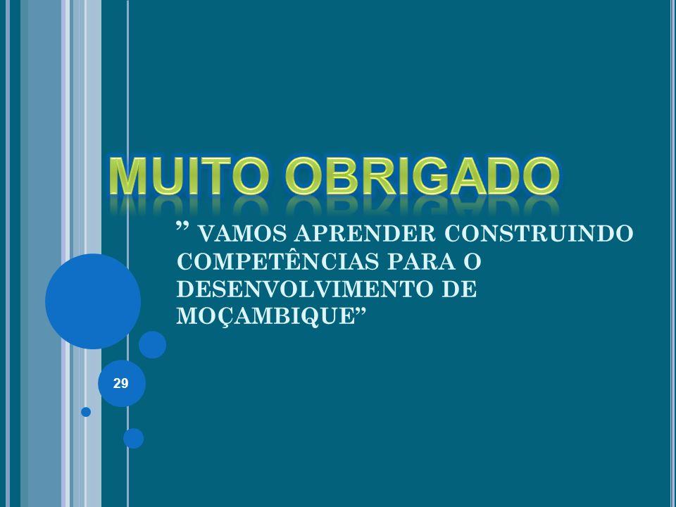 VAMOS APRENDER CONSTRUINDO COMPETÊNCIAS PARA O DESENVOLVIMENTO DE MOÇAMBIQUE 29
