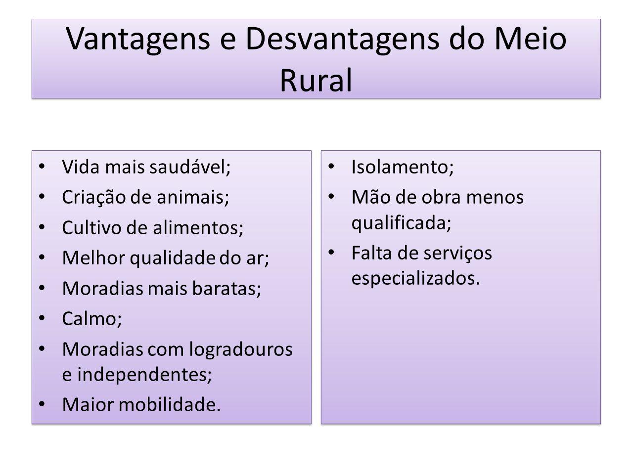 Vantagens e Desvantagens do Meio Rural Isolamento; Mão de obra menos qualificada; Falta de serviços especializados. Isolamento; Mão de obra menos qual