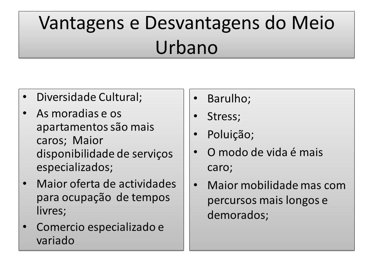 Vantagens e Desvantagens do Meio Urbano Diversidade Cultural; As moradias e os apartamentos são mais caros; Maior disponibilidade de serviços especial